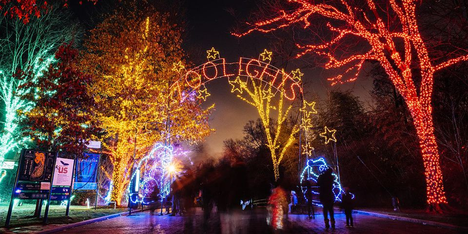 Washington D C Area Christmas Light Displays 2017