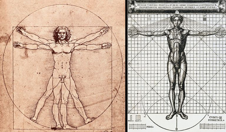 Vitruvian Man Principles Of Design Pdf