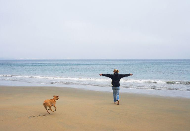 woman_dog_beach.jpg