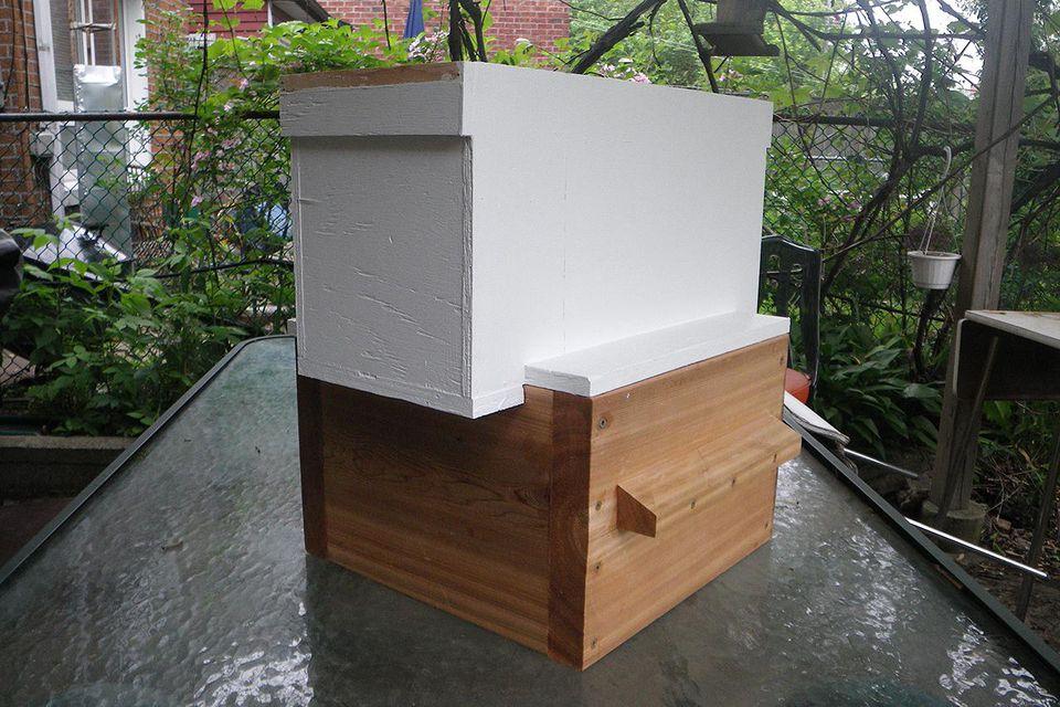 A standard 5-frame langstroth beehive.