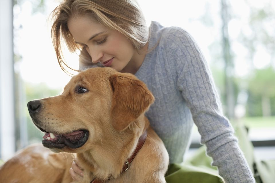 dogs for first-time owners