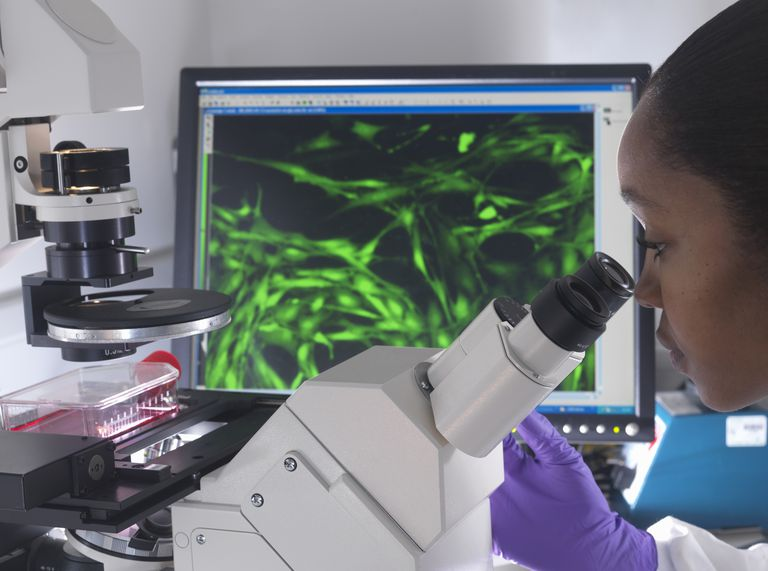 Woman looking into microscope with monitor in background
