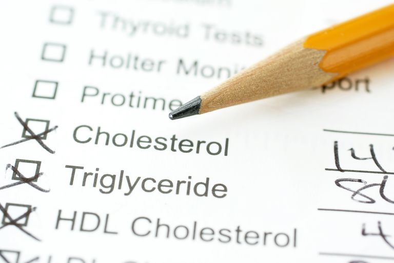 lab report on blood lipids
