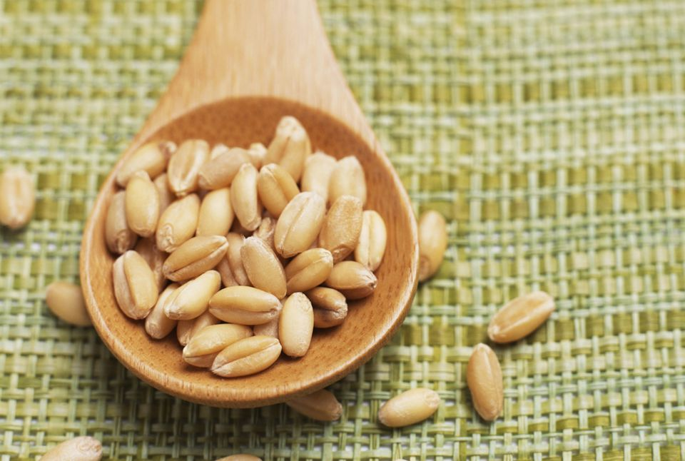 Whole wheat berries