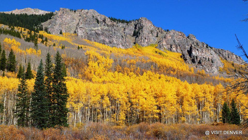 Fall Foliage Map 1 Fall In Colorado Jpg