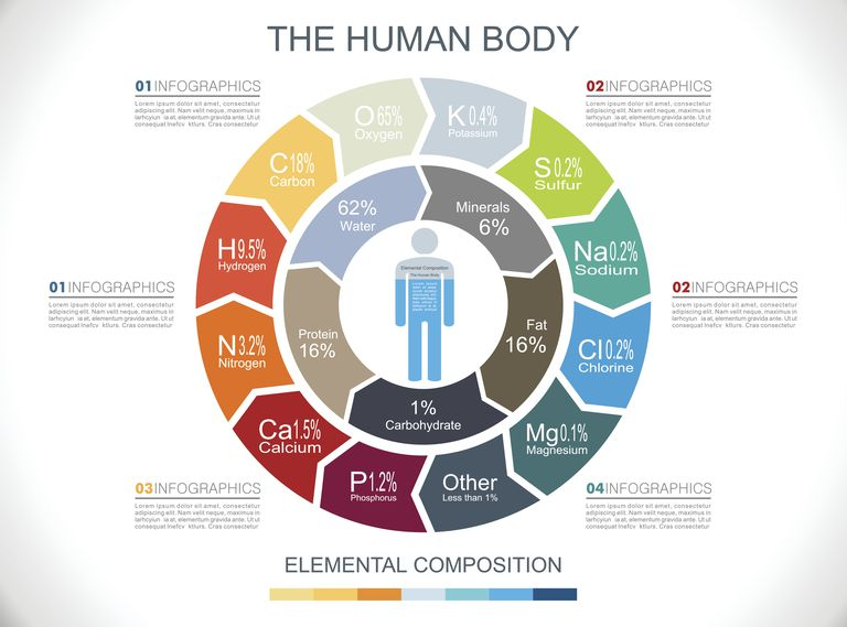 Nearly all of the human body consists of only 6 elements. Of course, those other elements are vital, too!
