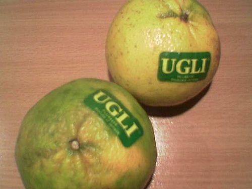 Ugli Fruit - Citrus
