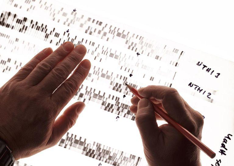 Criminologist studying DNA