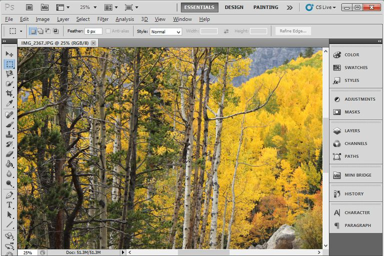 A screenshot of Autumn Leaves in Adobe Photoshop CS5