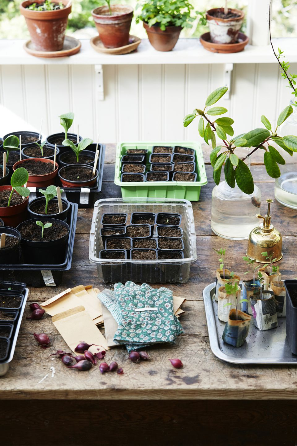Gardening chores for April