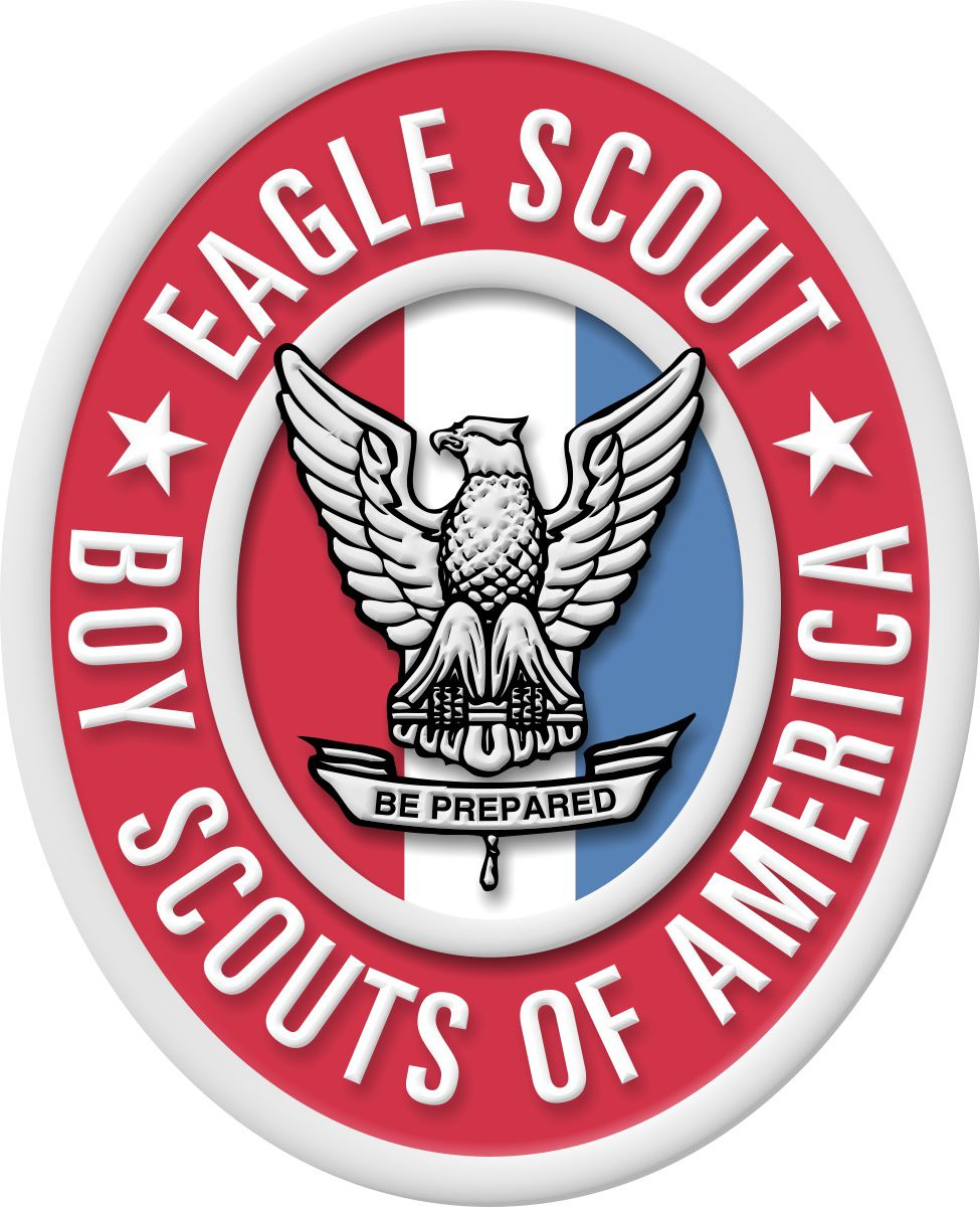 Image result for eagle scout