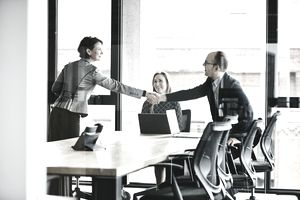 Businesspeople shaking hands before meeting
