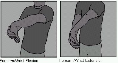 Wrist and Forearm Stretches
