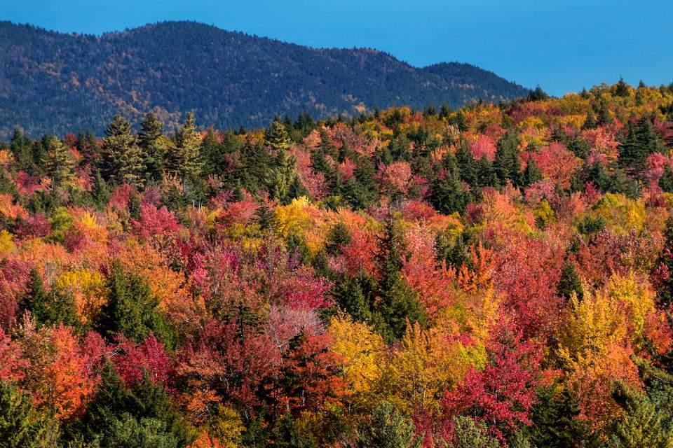 Peak Fall Foliage in New England