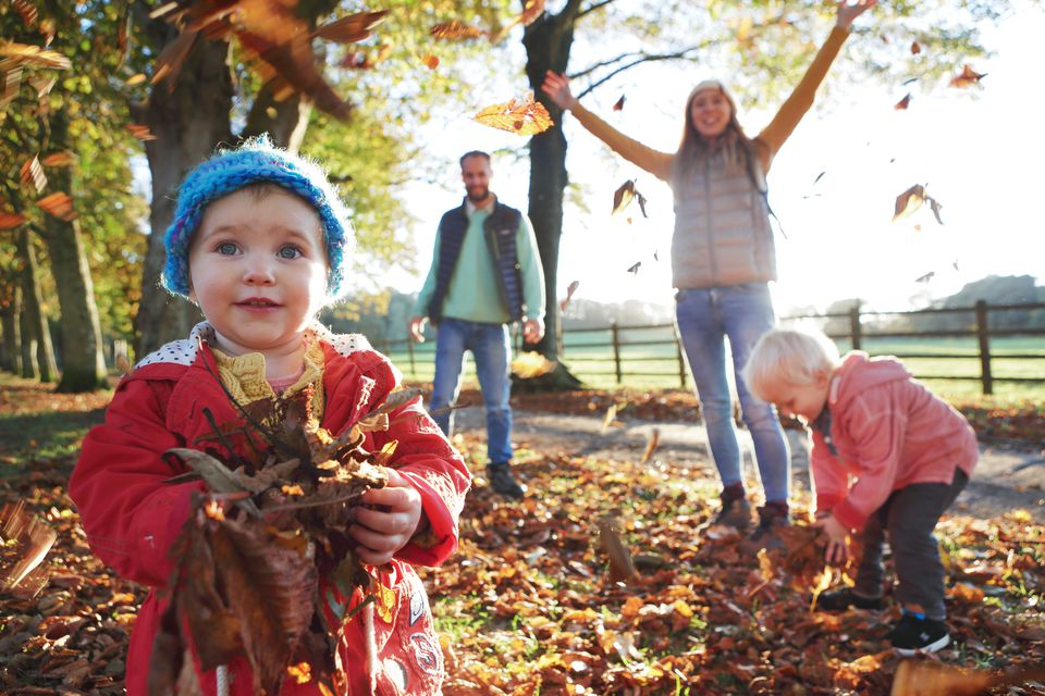 Family playing with fallen leaves in park