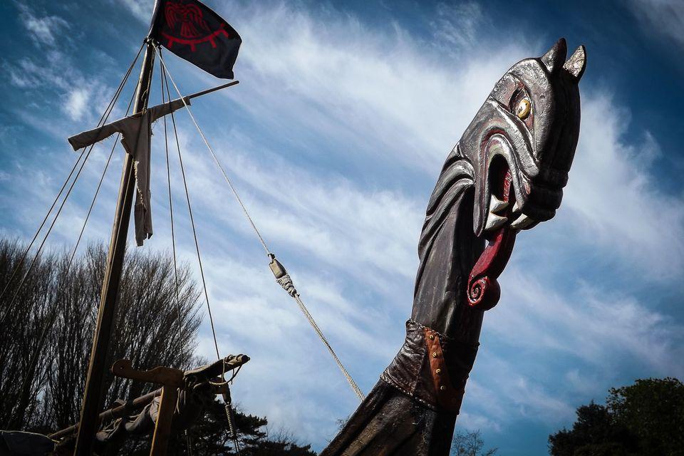 The Vikings ... fresh blood for Ireland