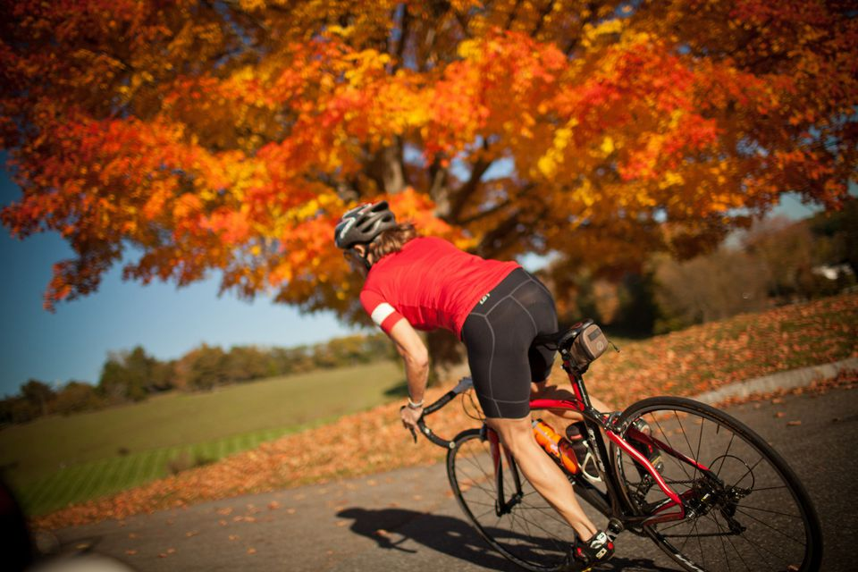 Fall Biking Tours