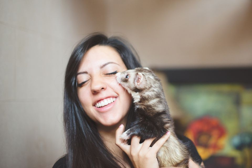 Girl and pet ferret