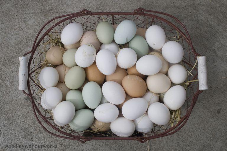 eggs-by-woodleywonderworks.jpg