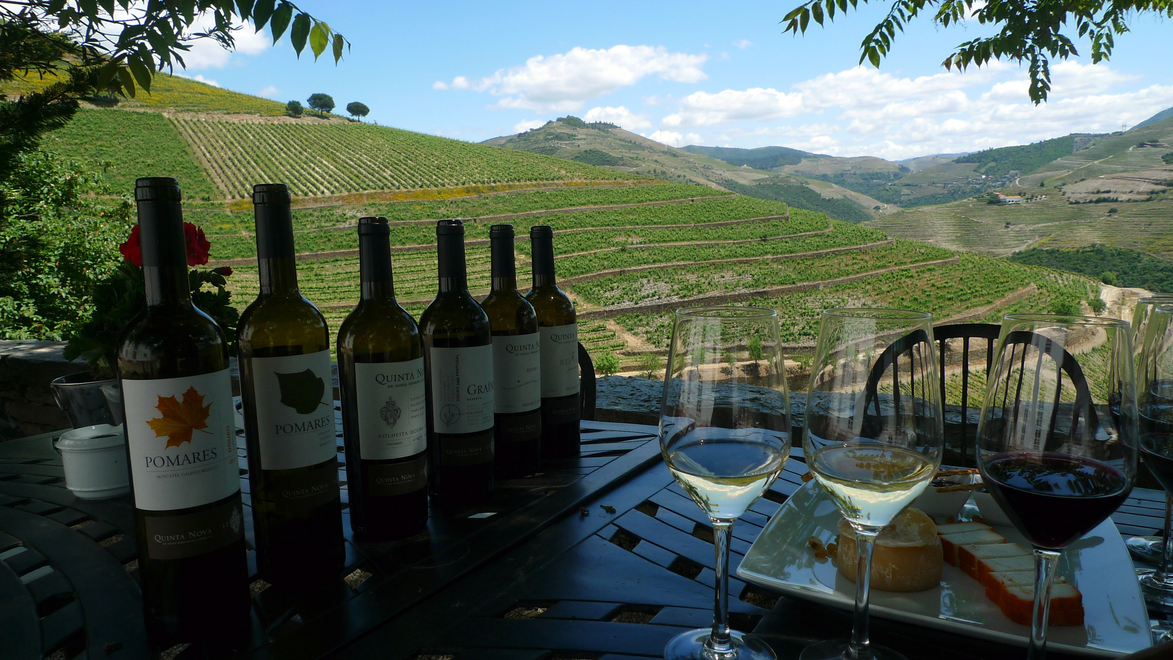 Wine Tours Of Spain