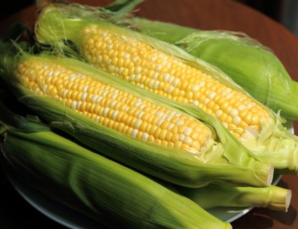 How to cook corn on the cob how to roast corn on the cob ccuart Images