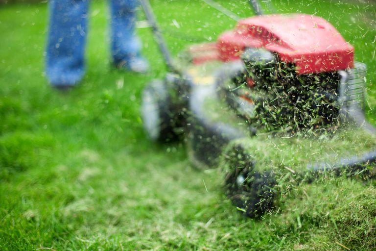 Man mowing lawn.