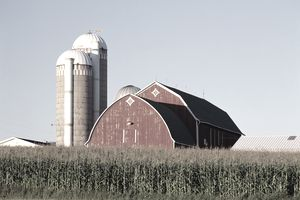 USA, Wisconsin, Edgar, red barn, silos and field of corn