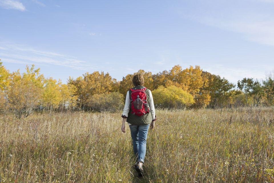 Fall Walking Trips