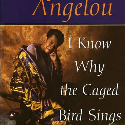 an analysis of the racism in i know why the caged bird sings by maya angelou I know why the caged bird sings maya angelou buy  introduction table of contents  all subjects about i know why the caged bird sings  summary and analysis.
