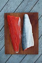 Fresh steelhead salmon