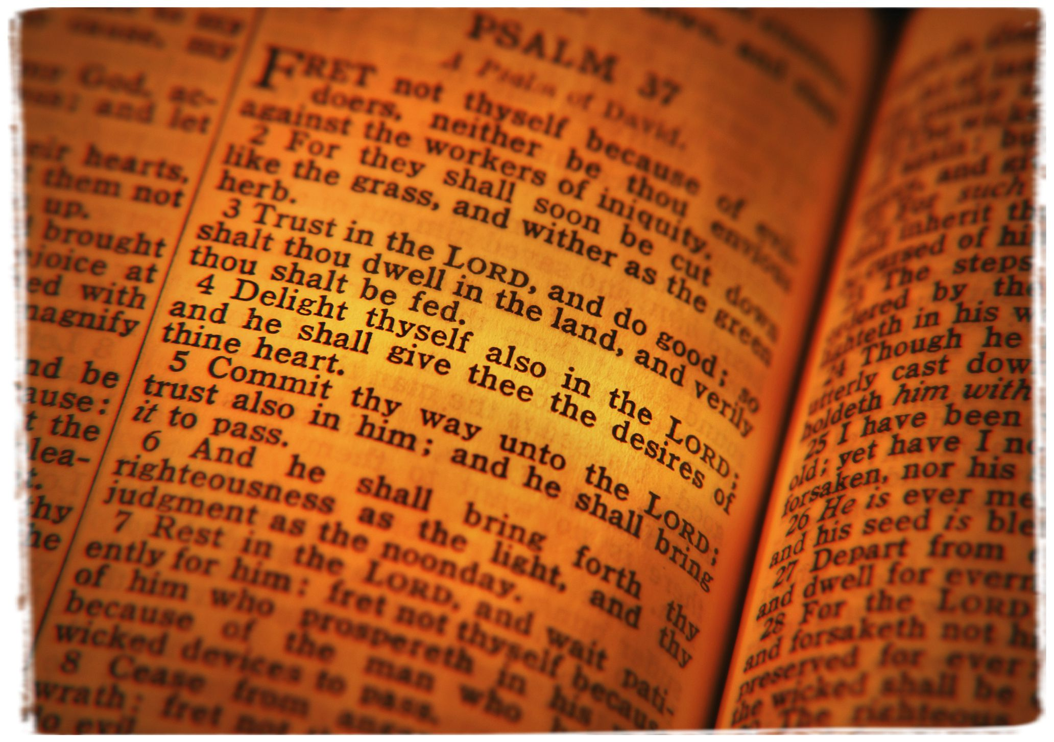 Bible Verses on Rejection to Bring Us fort