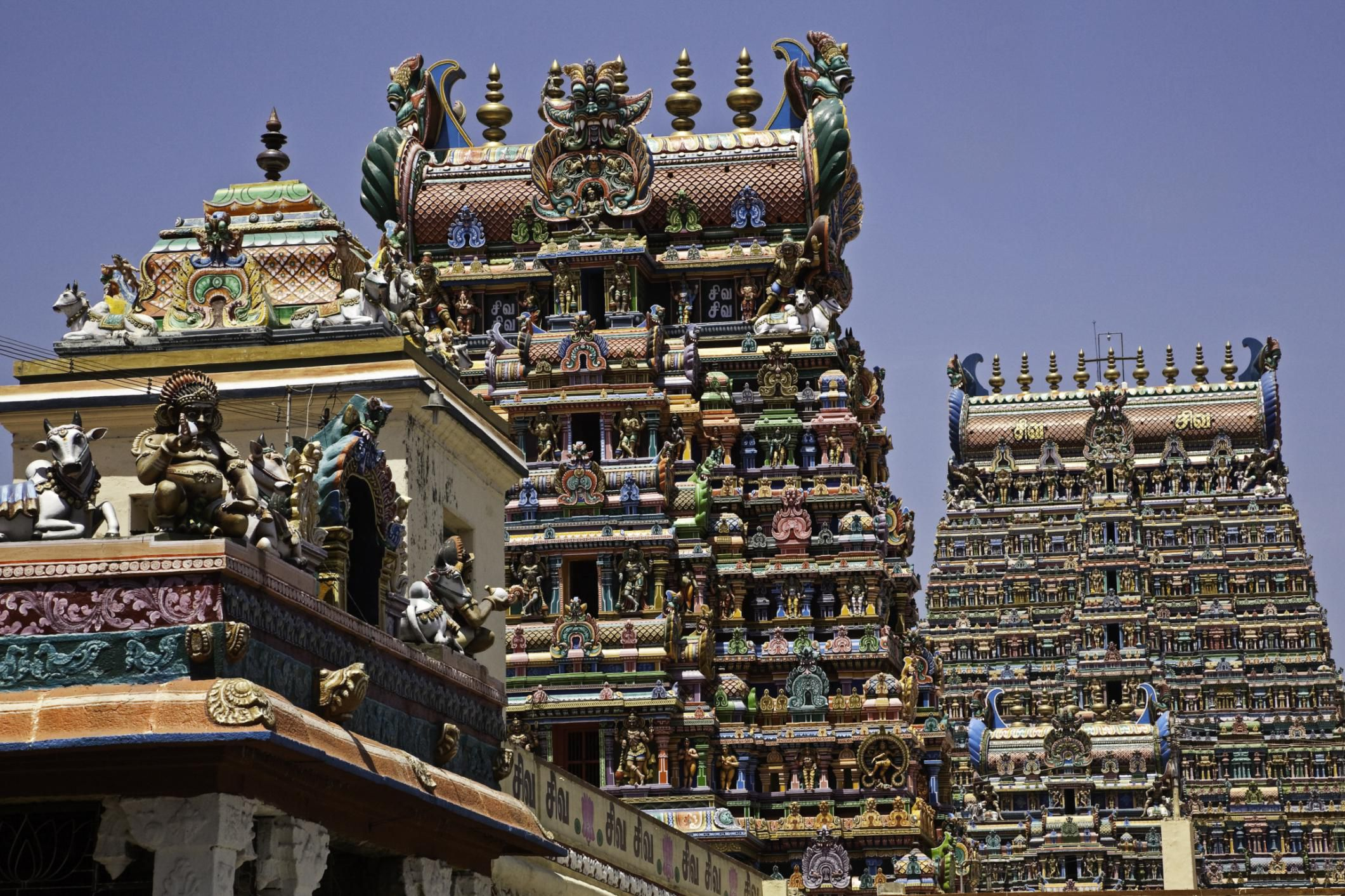 meenakshi temple Meenakshi amman temple, also called as meenakshi sundareswarar temple is a famous hindu temple located on the southern bank of vaigai river in the temple c .