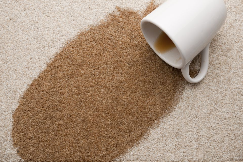 Coffee stains on carpet are easiest to remove if you get to them quickly