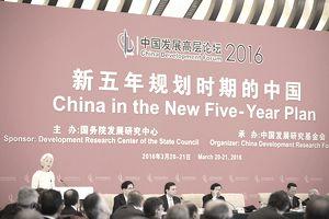A speaker at China Development Forum 2016