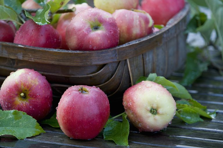 Apples are an inexpensive superfood.