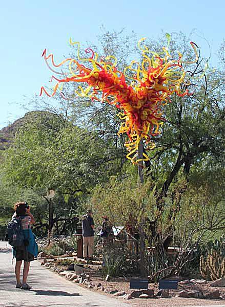 Chihuly Glass at Desert Botanical Garden in Phoenix AZ