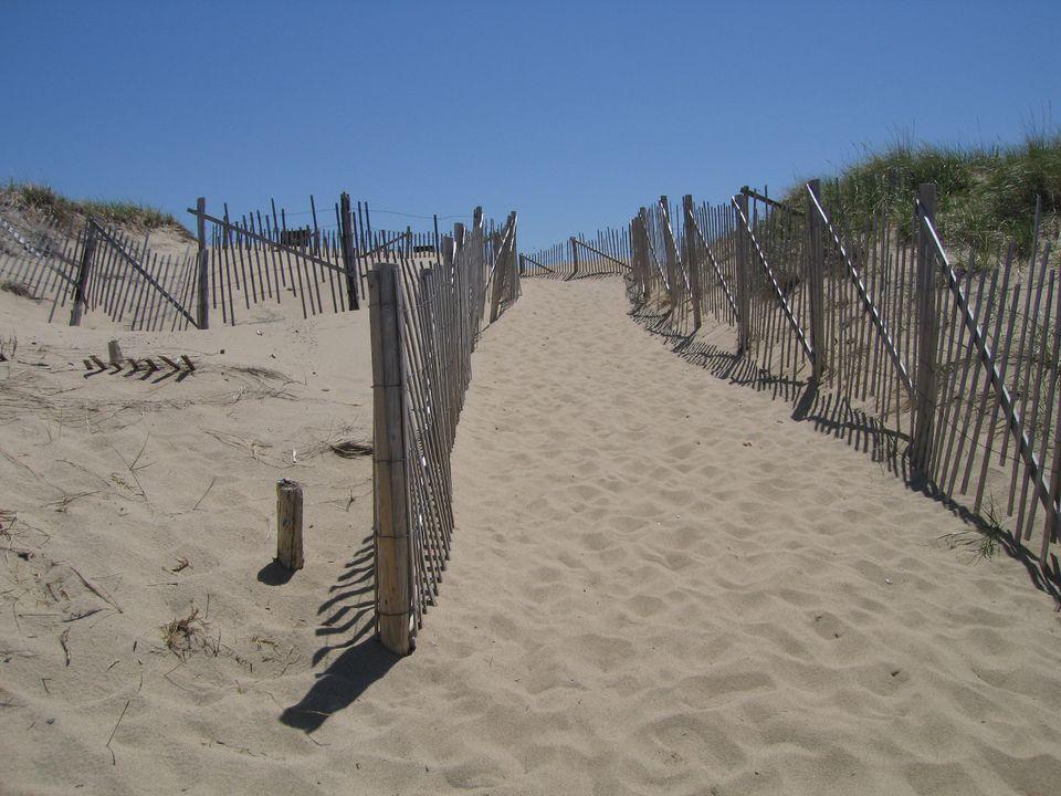 Cape_Cod_Nat_Seashore_3.jpg