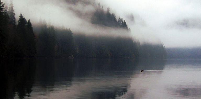 Coast of British Columbia near Zeballos