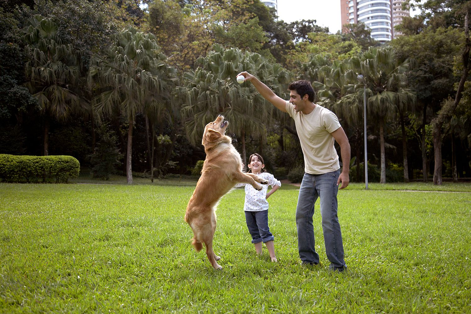 10 Great Dog Parks in Broward County