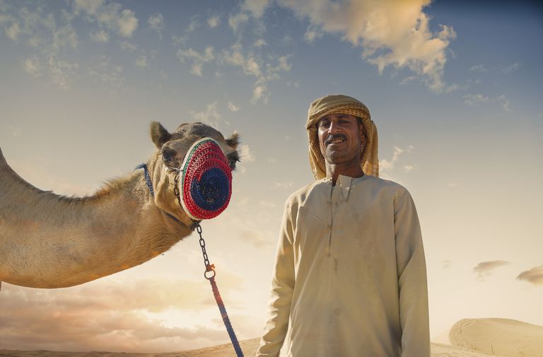 Portrait of camel and bedouin in desert, Dubai, United Arab Emirates