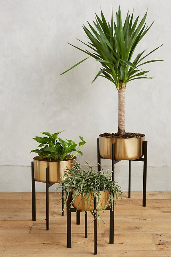 Best Planters And Vessels For Houseplants