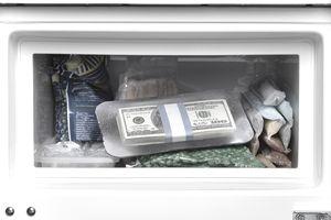cash-in-freezer.jpg