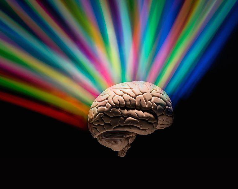 Human brain with rainbow colors