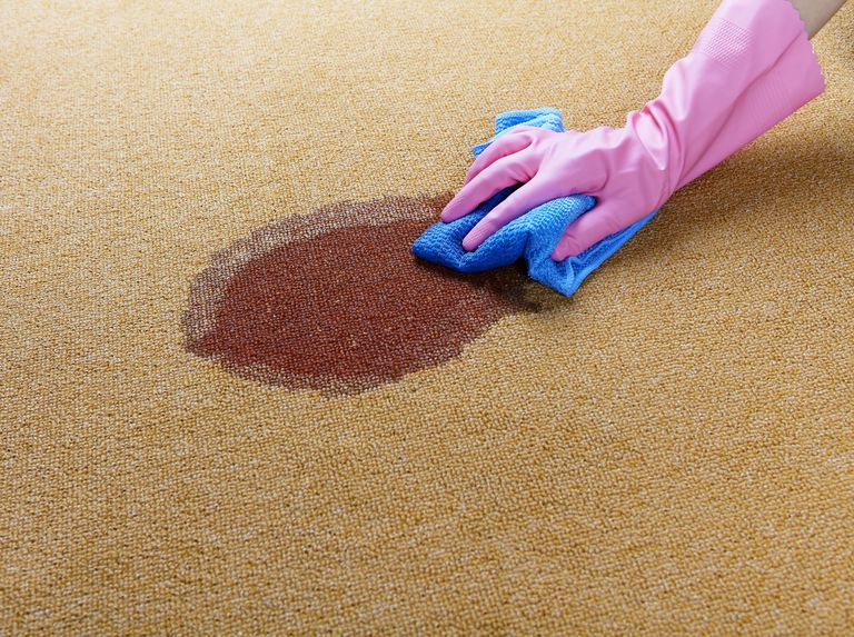 hand in a pink rubber glove scrubbing a stain out of a carpet