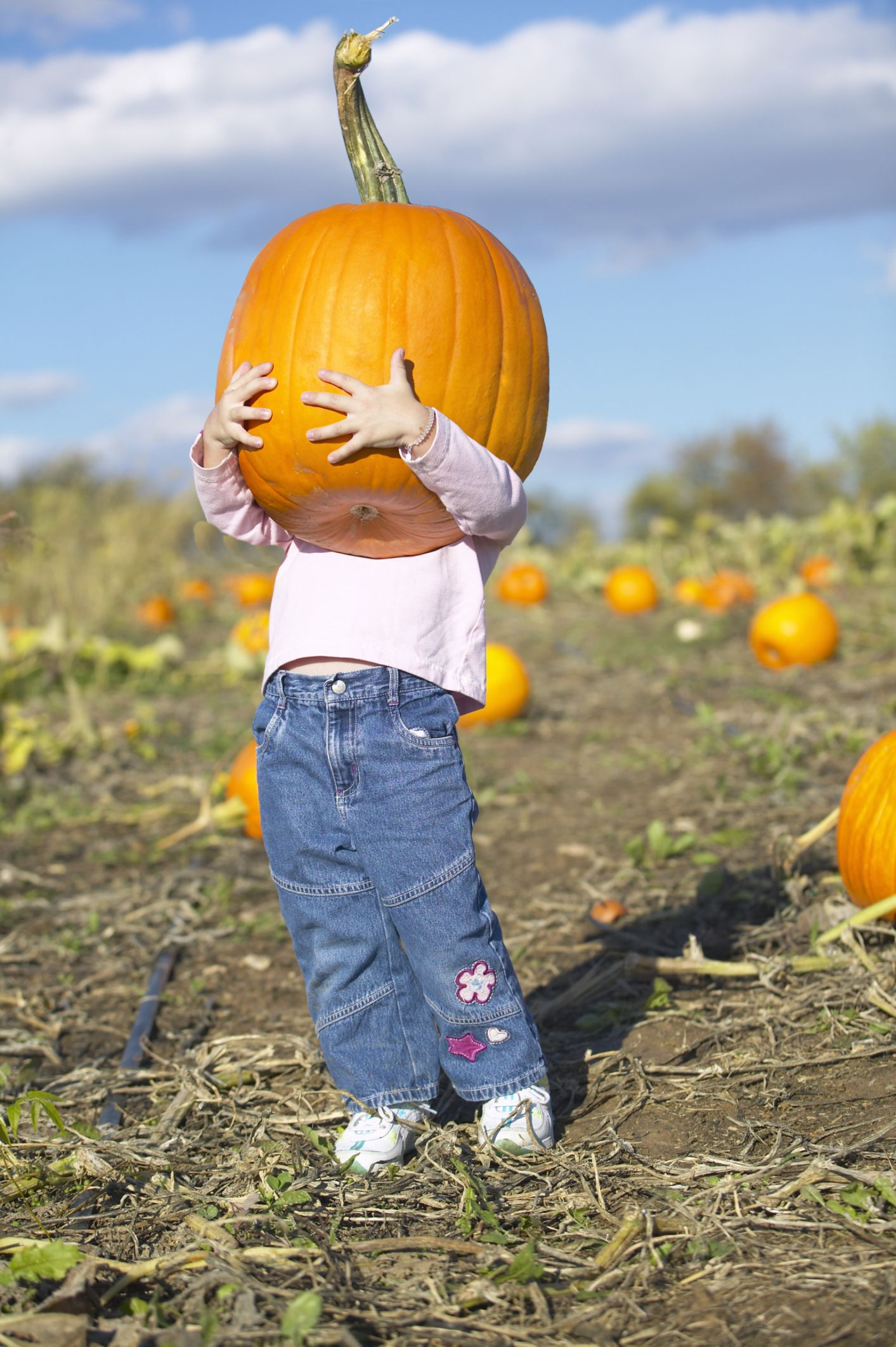 pumpkin patches in oklahoma city - Halloween Stores Oklahoma City