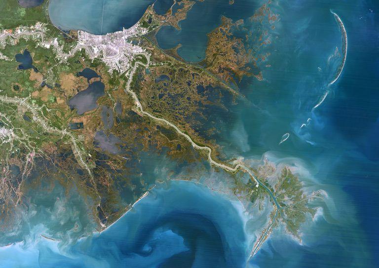 Mississippi Delta, satellite image