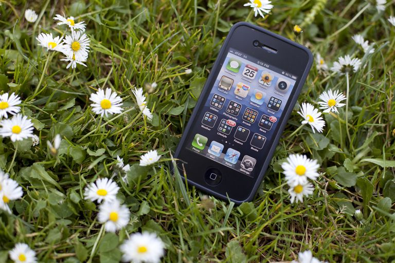 An image of an iPhone lost in the grass.
