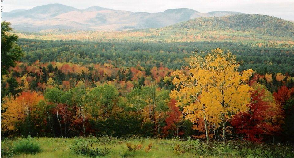 Bethel Maine Fall Foliage