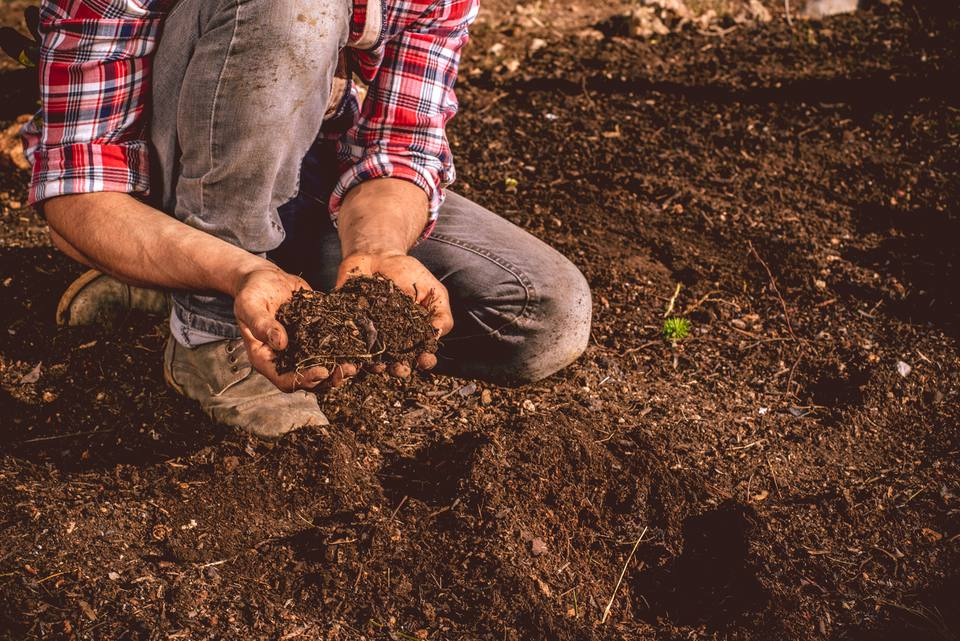 What is Loam Soil?