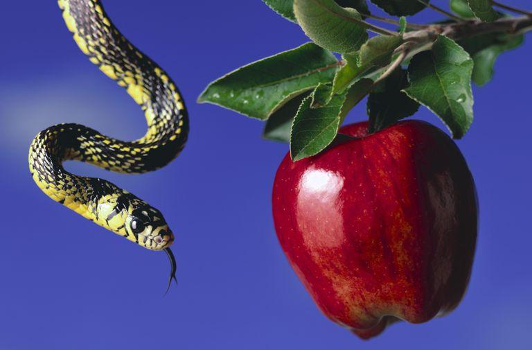 Serpent Apple